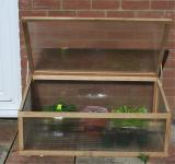 My Cold Frame