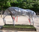 Horse Sculpture In Jardins De Luxembourg