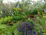 Gardeners World Live 2008